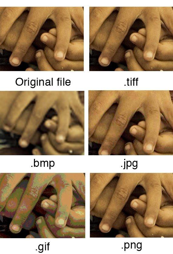مقارنة بين أهم صيغ و إمتدادات الصور ( TIFF ,JPG, GIF, PNG ) و الفرق بينها 5