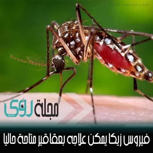 العلماء يكتشفون : فيروس زيكا يمكن علاجه و بأدوية معروفة حالياً ! 1