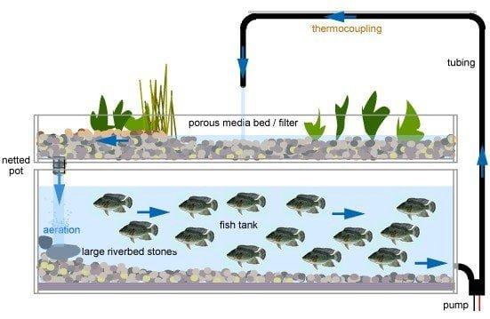 تقنيات الزراعة بدون تربة : الهيدروبونيك - الأيروبونيك - الأكوابونيك 5