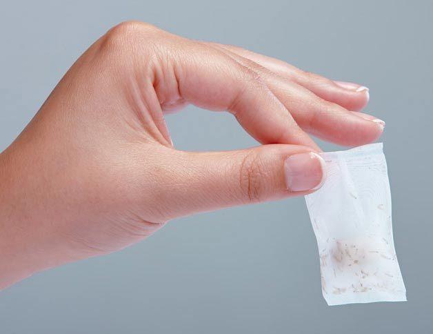 تعرف على فوائد علاج الجروح بإستخدام يرقات الذباب ! 3