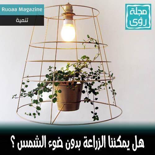 هل يمكن زراعة النباتات بدون ضوء الشمس تحت لمبات إضاءة عادية ؟ 2