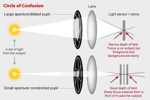 لماذا يتجاهل أطباء العيون تلك النظارة وما سر عملها ؟ Pinhole Glasses 3