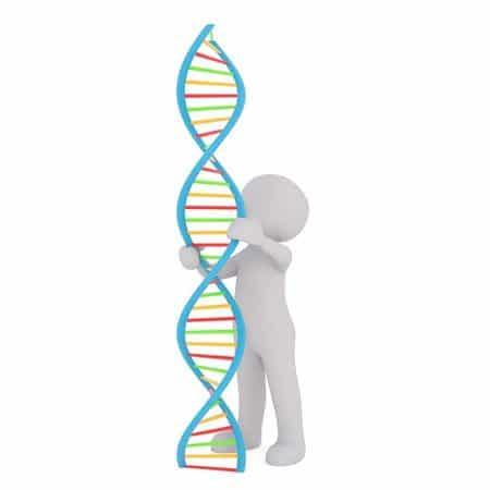 تخزين البيانات في الحمض النووي DNA، ثورة في حفظ المعلومات الرقمية 1