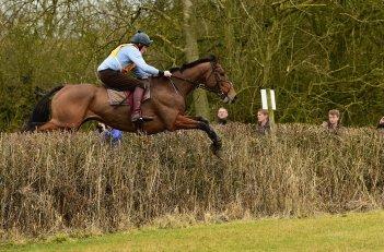 Rupert Gibson Photography Horse Jumping Copyright 2017