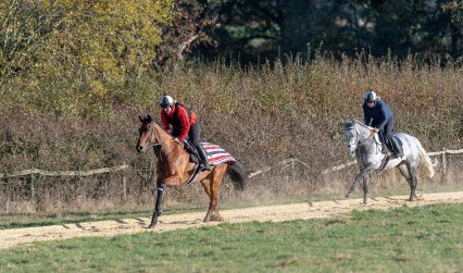 Rupert Gibson Photography 2018 - Equestrian -2