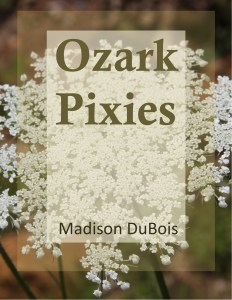 Ozark Pixies by Madison DuBois cover image