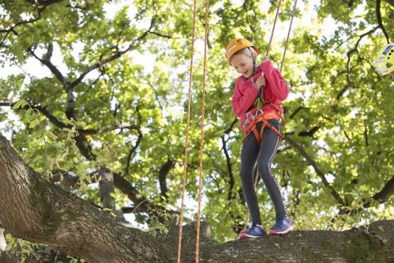 Youth Climbing Tree