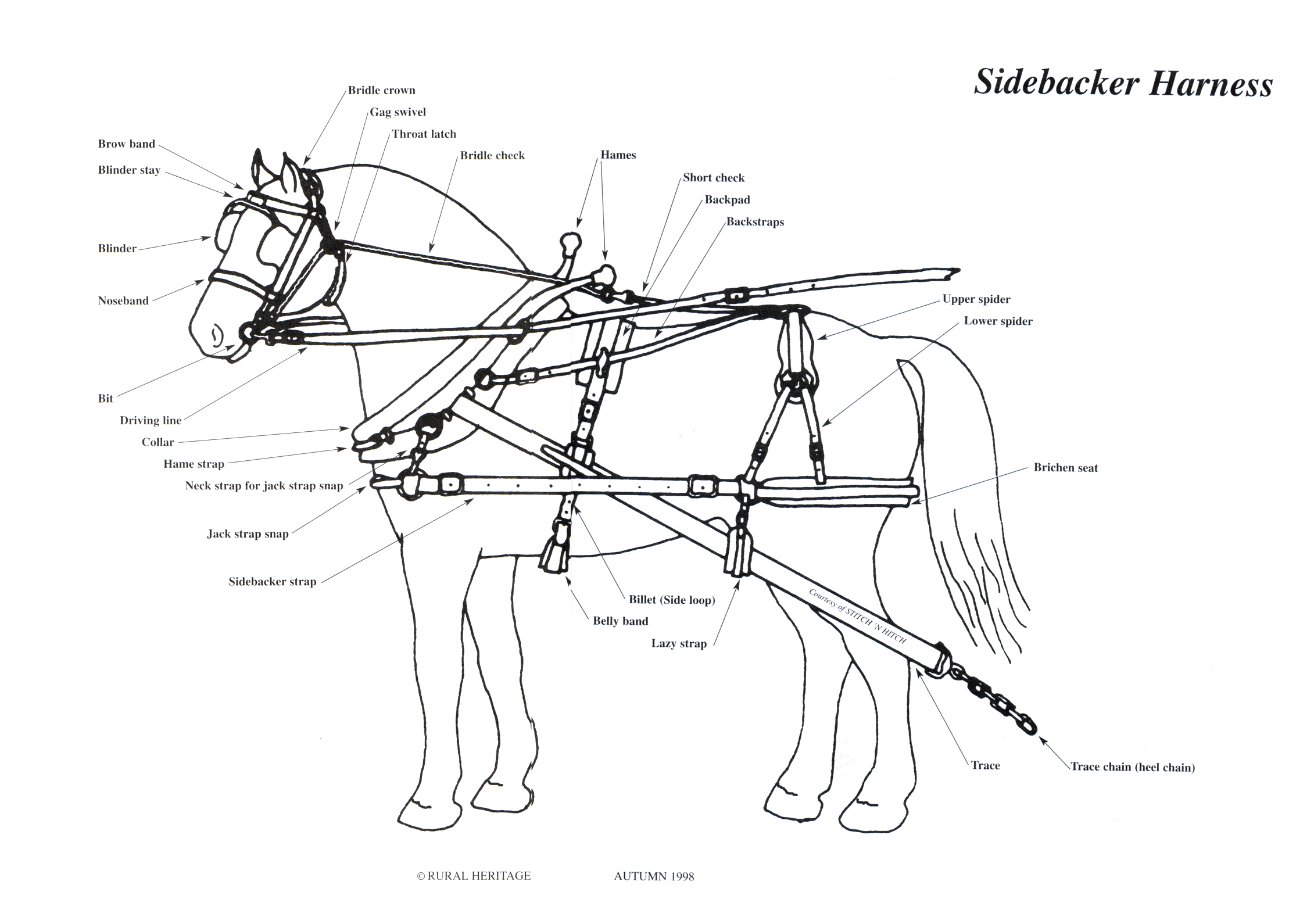 Rural Heritage Sidebacker Harness Illustration