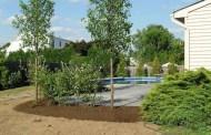 Fruit planting preparation