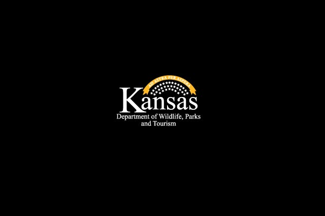 Youth invited to opening-day dove hunt in Kansas