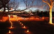 Hesston: Dyck Arboretum Winter Luminary Walk 2016 scheduled