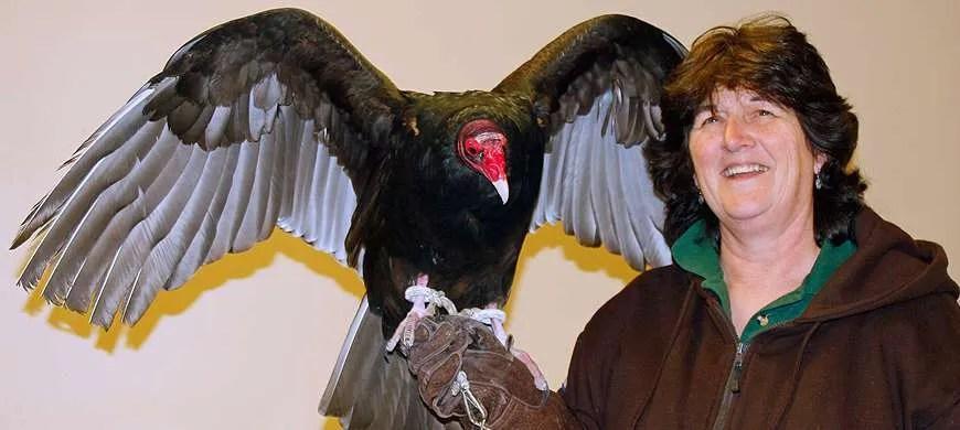 Rally Offers Fun Glimpse Into Migratory Bird Life