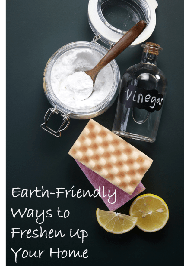 Earth-Friendly Ways to Freshen Up Your Home