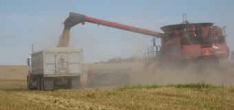 Barley pushed forward with Agri-Innovation program grant