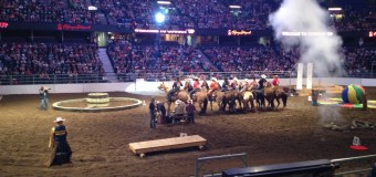 Exshaw's Kateri Cowley rides her way to top of the podium in Cowboy Up!