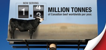BCRC: Producing more with less for the world market: Raise your beef IQ