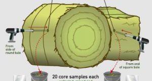 BCRC: New Feed Testing Tools