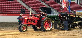 Vintage tractor enthusiasts pull and swap stories at Calgary Stampede