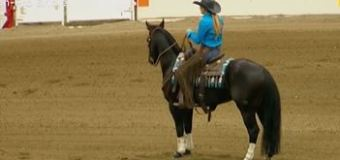 Bushnell takes top spot in her first Non-Pro Bridle in Calgary Stampede Working Cow Horse