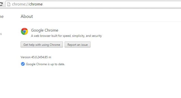 How to Turn Off Automatic Updates in Google Chrome