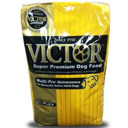 Victor Multi-Pro Maintenance