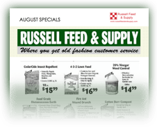 Russell Feed_Ad Image