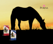 Purina Equine Senior Horse Feed at Russell Feed and Supply.