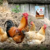 Purina Farm to Flock Chicken Treats is a natural, healthy and wholesome treat for your chickens.