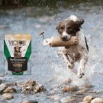 Victor Performance Dog Food FB Canva