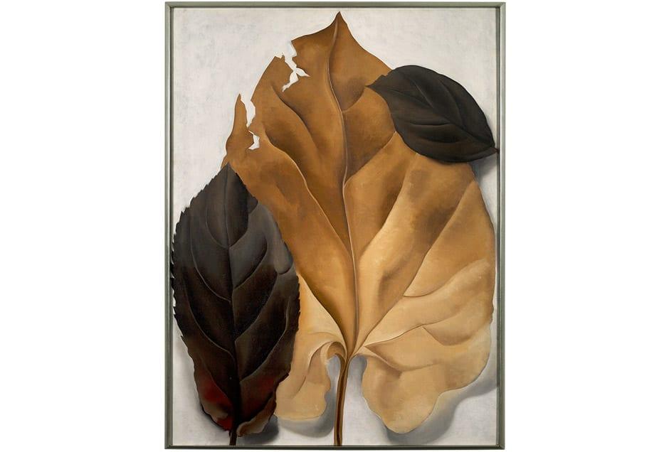 GEORGIA_OKEEFFE_Tan-Leaves-Framed