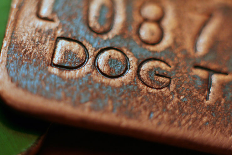 Can You Get A Dog Akc Registered Without Papers