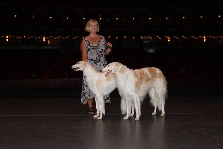 Borzoi dog breeder