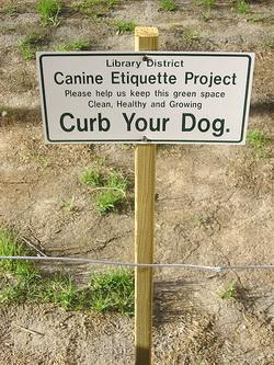 Canine Etiquette