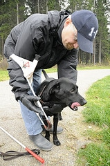 guide-dog_135075