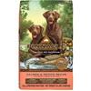 Pinnacle Salmon & Potato Holistic Dog Food
