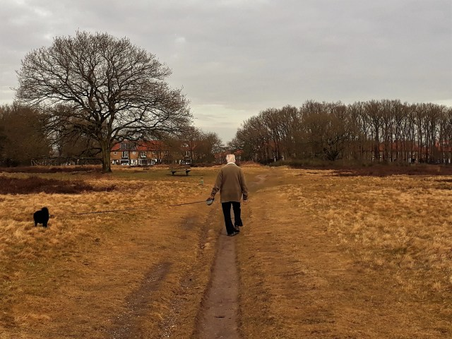 Man wandelt op hei met hondje - Het leven van Toon Hermans - Rust in mijn hoofd - coaching