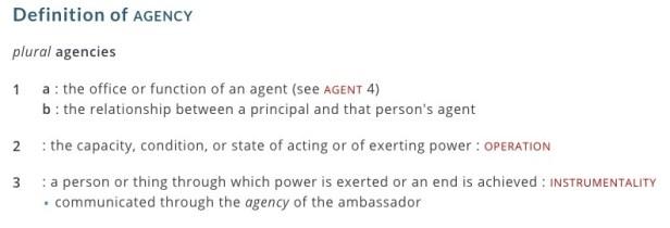 agency definition merriam webster