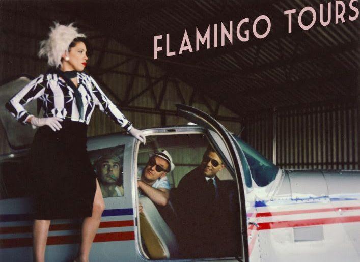 FlamingoTours