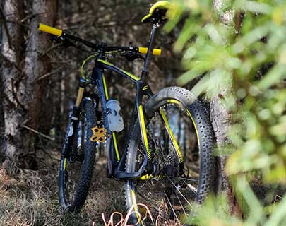 mountain bike in te middle of the forest