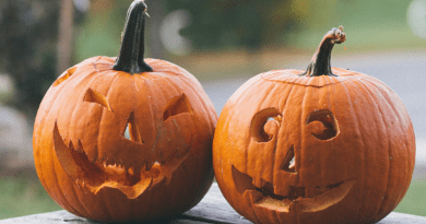 Halloween 2019: What You Can Do to Get into the Spooky Season