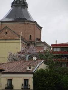 Huerto de las Monjas desde el jardín del Príncipe de Anglona