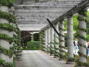 Jardines de Cecilio Rodriguez (16)