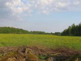 Seminario Internacional Vias Verdes Riga (45)
