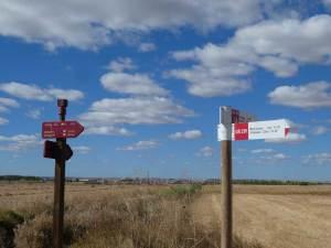 Camino-Natural-del-Duero-Rutas-Pangea