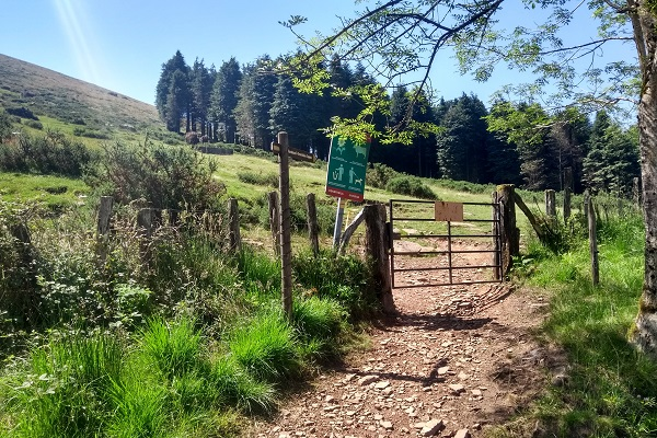 Cruzar portón para dirigirnos hacia Ermitako Lepoa