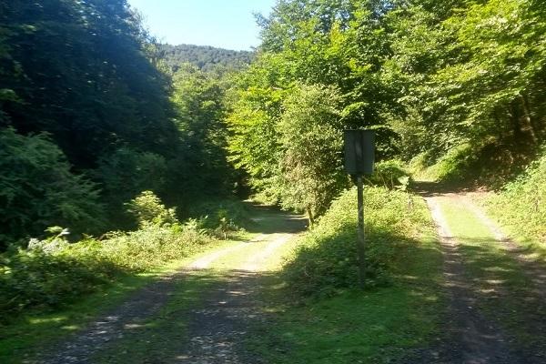 Bifurcación izquierda sendero de Leurtza