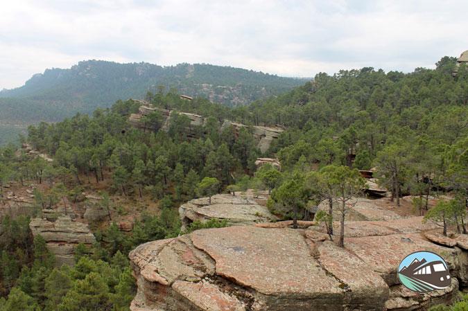 Pinares del Rodeno - Albarracín