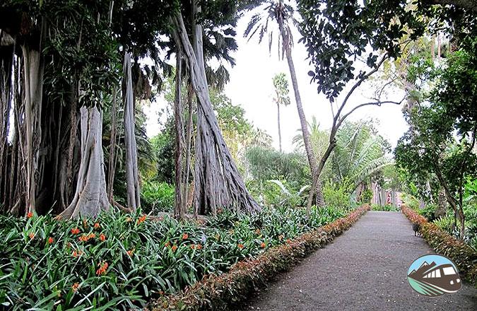 Jardín de Aclimatación de la Orotava - Puerto de la Cruz