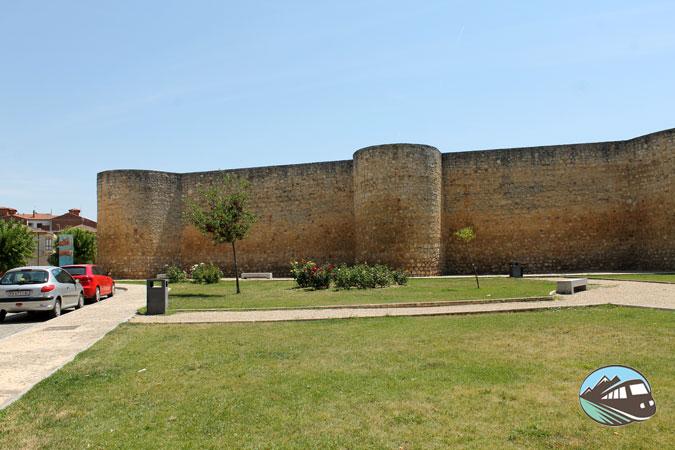 Castillo de Toro