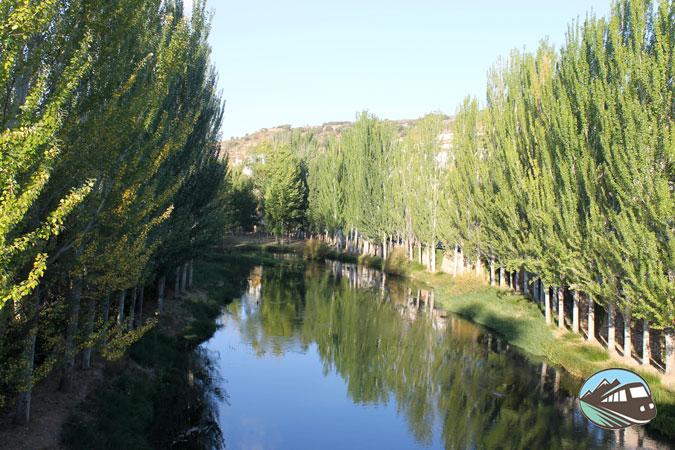 Río Cifuentes - Trillo